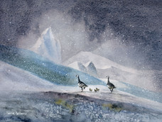 Family outing on the glacier