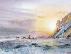 Arctic Sunrise, Kap Hoegh