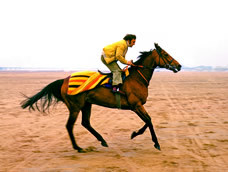 Red Rum with Billy Ellison on Southport beach