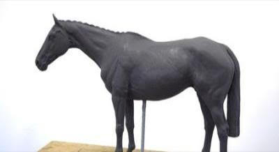 "Denman ""The Tank' to be celebrated in bronze"
